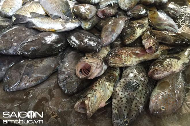 Béo nhất, sang nhất và mắc nhất là canh chua cá mú. Thỉnh thoảng mới thấy người ta bán ở chợ bởi nó mắc như vàng, ít người dám mua về ăn lắm.